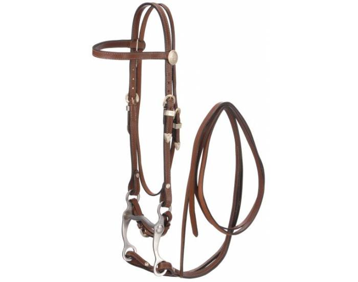 Parts of a Western Bridle
