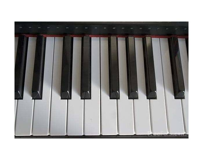 Picture of piano black keys racism accters