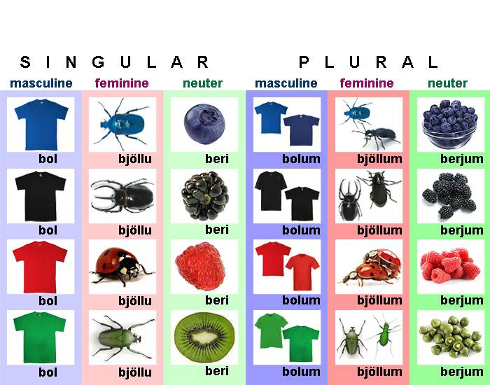 Icelandic Adjective Declension - Strong Dative