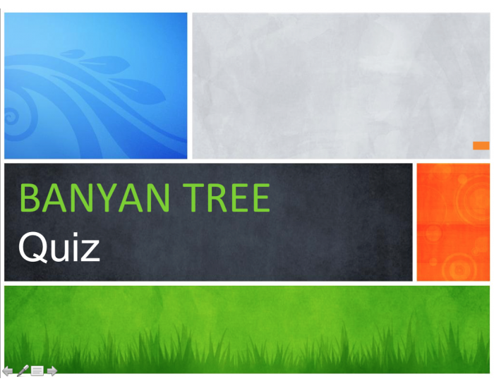 questions and answers on banyan tree expansion Case 5 banyan tree sustainable development question 1 : identify the  ho,  ceo of banyan tree initiates the expansion plan of banyan tree to open new.