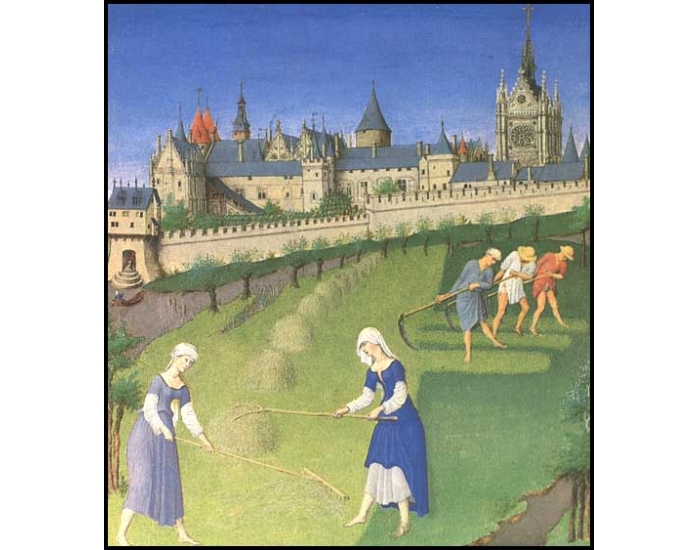 Chapter 8 The High and Late Middle Ages Test Review