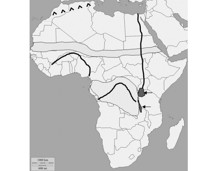 SS7G1a Physical Features of Africa