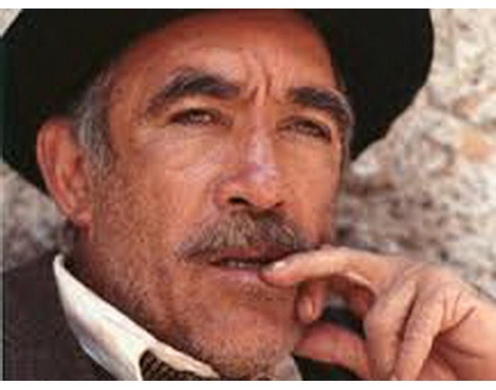 Anthony Quinn Movies 113