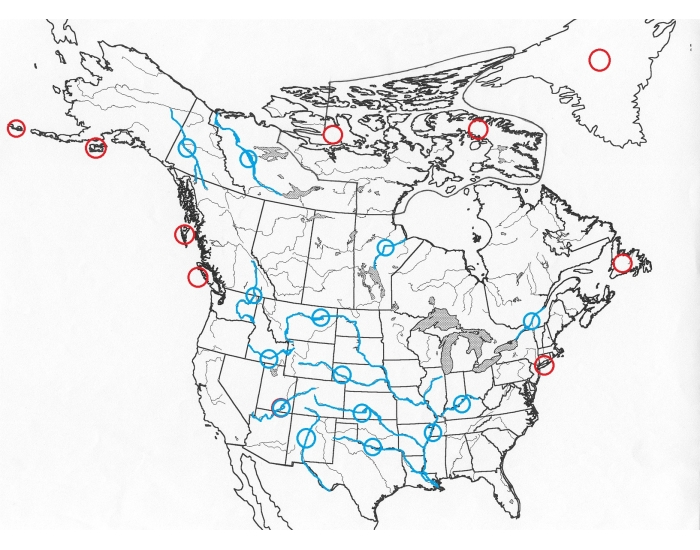 Islands and Rivers of North America