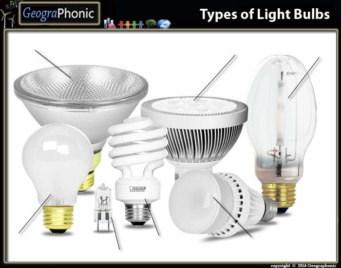 Different Types Of Light Bulbs Purposegames