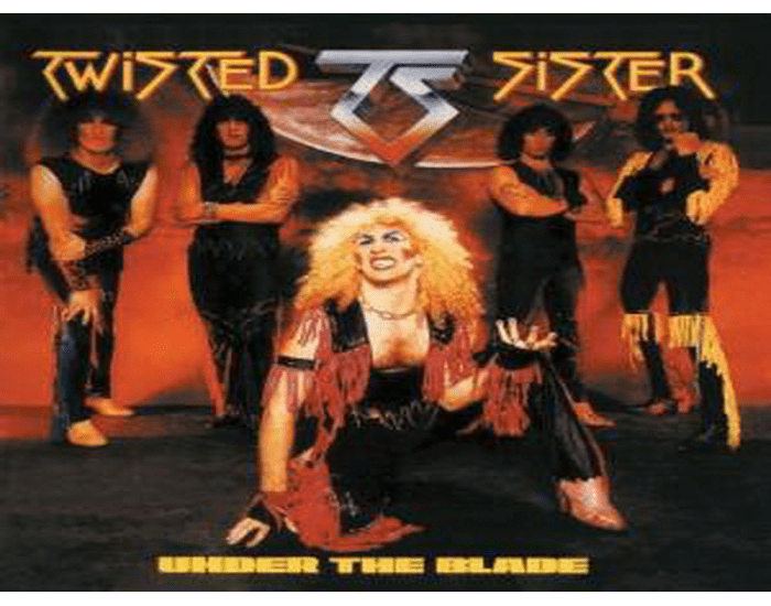 Twisted Sister Mix 'n' Match 449