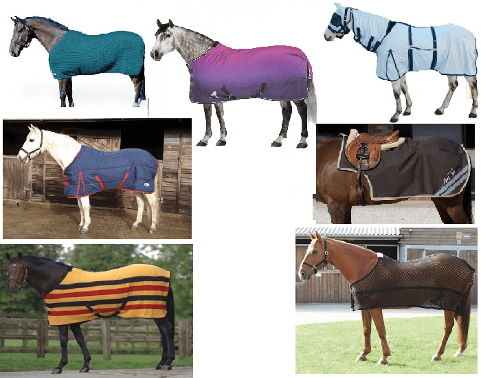 Name The Type Of Horse Rug