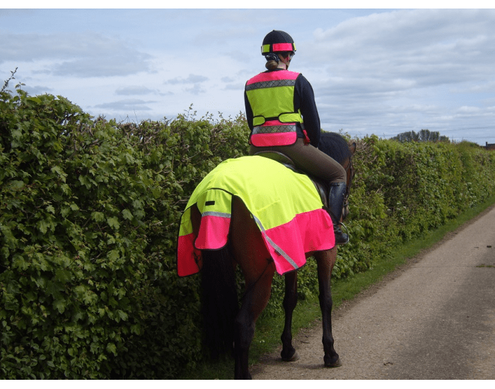 Riding and Road safety BHS theory questions - M-C