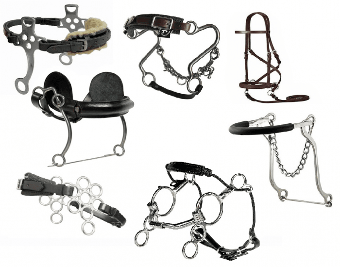 A Guide to Bridle Types | Horseseller