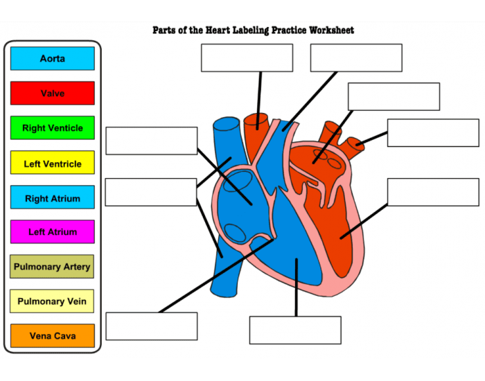 Heart Labeling Game