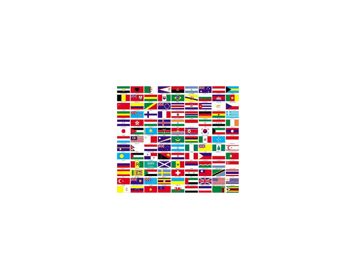 Confusing Flags Slide Quiz