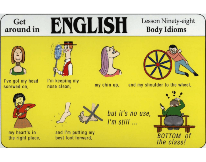 Idioms using parts of the body