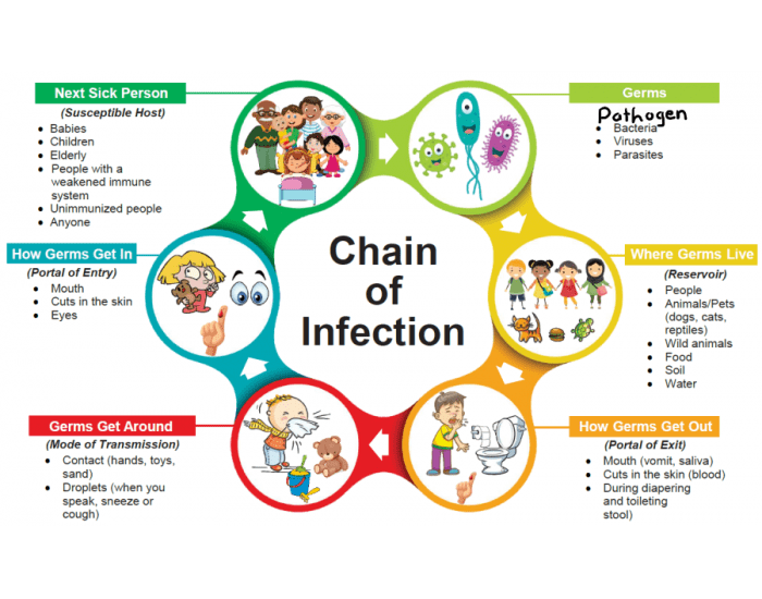 game statistics - chain of infection