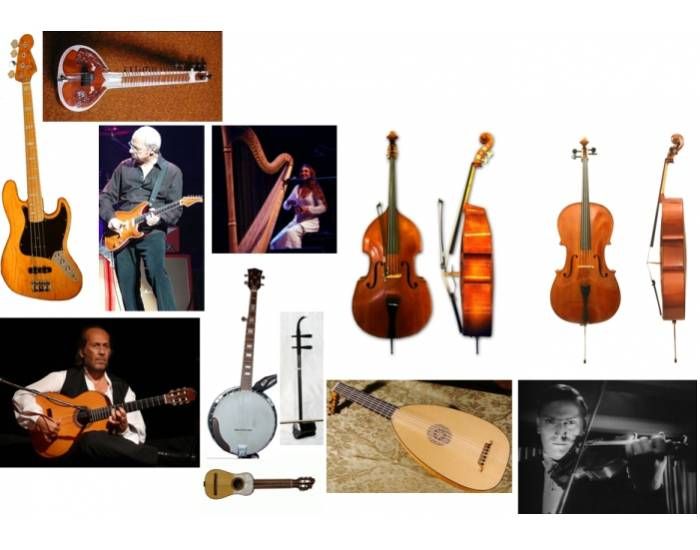 Musical Instruments (Strings)