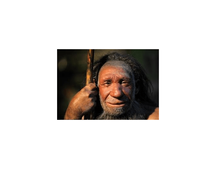 Paleolithic tools and people