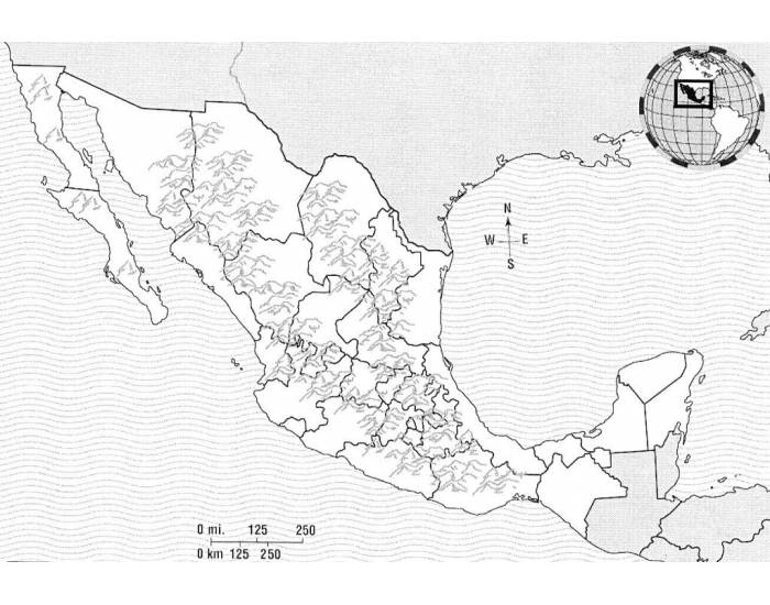 84364 Images Of Physical Map Mexico on plateau of mexico, veracruz mexico, capital of mexico, atlas of mexico, rivers of mexico, 31 states of mexico, torreon mexico, geography of mexico, the people of mexico, major landforms in mexico, baja mexico, zacatecas mexico, valley of mexico, mountains of mexico, physical landforms of mexico, lakes of mexico, copper canyon mexico, physical map baja california, military flag of mexico, geographical features of mexico,