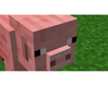 The Easiest Minecraft Game EVER!!!!!