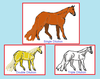 Dilutions of Chestnut of the Horse