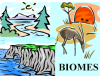 Ecology and Biomes