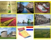 GEOGRAPHICAL EXCITEMENTS OF NIEDERLAND
