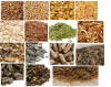 Different types of horse feed -DOT QUIZ - EASY