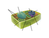 Plant Cell Organelles Labeling Interactive