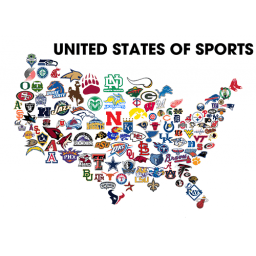 Sports Fans in the USA